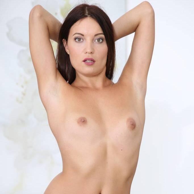 Pornstar Dee Anal 113