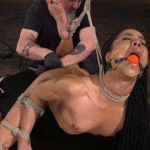 Kira Noir - Hogtied - Kink - Corporal Punishment